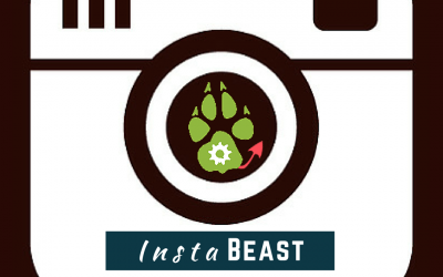 InstaBeast: My Beastly Instagram Collection