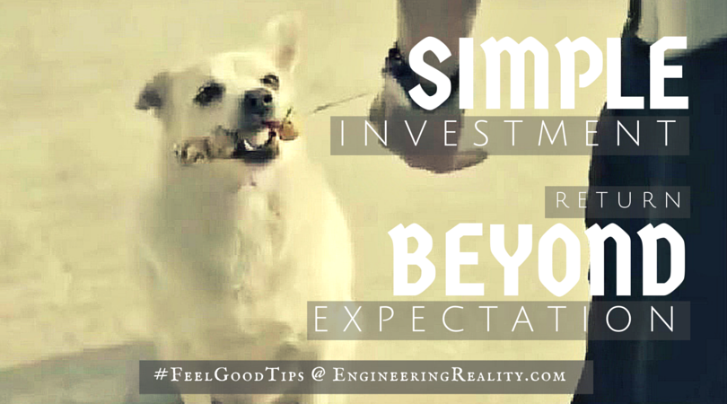 Awesome Commercial – Simple Investment